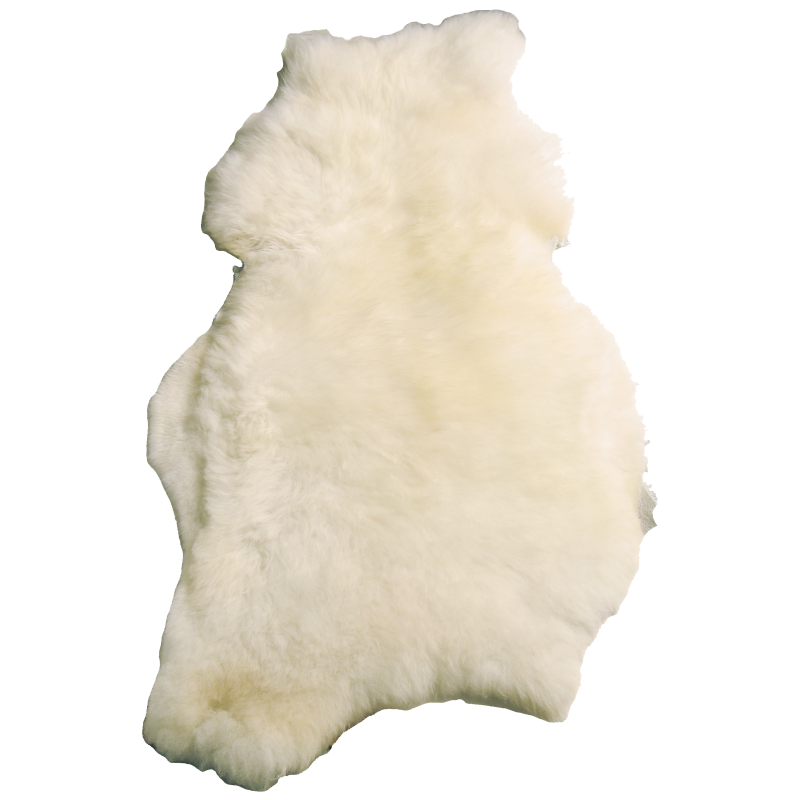 Mouton lainé